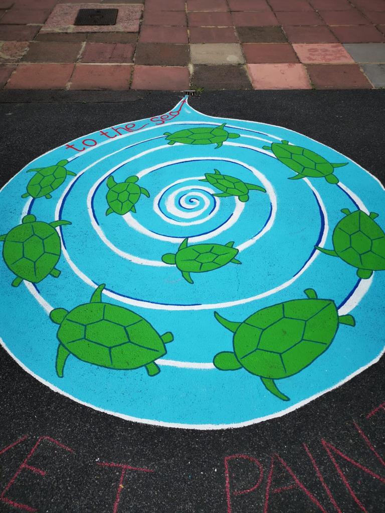 Turtle Whirlpool drain art